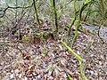 Bunker Hilgenbachstellung 5.jpg