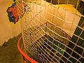 Bunkr Parukářka, schodiště a lezecká stěna.jpg