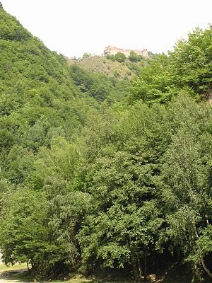 Poenari Castle - The citadel seen from the national road