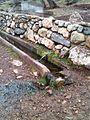 Burim Uji ne fshatin,Cahan.JPG