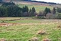 Burn of Aultmore - geograph.org.uk - 315465.jpg