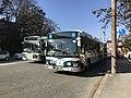 Buses at Naiku Bus Stop.jpg