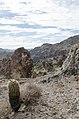 Butcher Jones Trail to Pinter's Point Loop, Tonto National Park, Saguaro Lake, Ft. McDowell, AZ - panoramio (44).jpg
