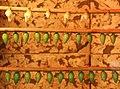 Butterfly cocoons - Jesperhus - panoramio.jpg