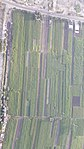 By ovedc - Aerial photographs of Luxor - 46.jpg