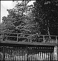 CH-NB - Estland, Petseri (Pechory)- Kloster - Annemarie Schwarzenbach - SLA-Schwarzenbach-A-5-16-083.jpg