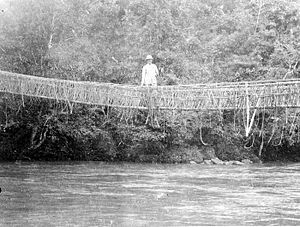 Mamasa Regency - A European stands on a rattan bridge in the area Mamasa, Toradja Land, Celebes