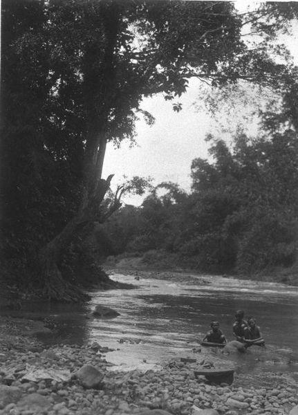 File:COLLECTIE TROPENMUSEUM Kinderen in de rivier bij Djember op Oost-Java TMnr 60009819.jpg