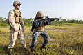 CORTRAMID-Live Fire and Static Displays 140807-M-SO289-015.jpg