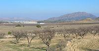 Calasparra y sierra del Molino.jpg