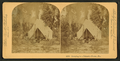 Camping in Palmetto Forest, Florida, by Littleton View Co. 3.png