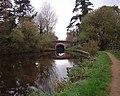 Canal bridge at Marsh Benham - geograph.org.uk - 27033.jpg