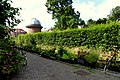 Canalside gardening, 5e Binnenvestgracht (19424680859).jpg