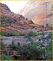Canyon Walls, Riverside Walk 5-1-14a (14080902870).jpg