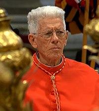 Cardinal Piat.jpg