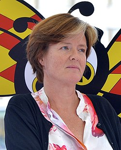 Carin Jämtin during the election campaign in 2014 - 1.jpg