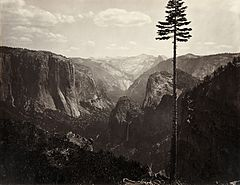 Carleton Watkins, Yosemite Valley, California, ca. 1865.jpg