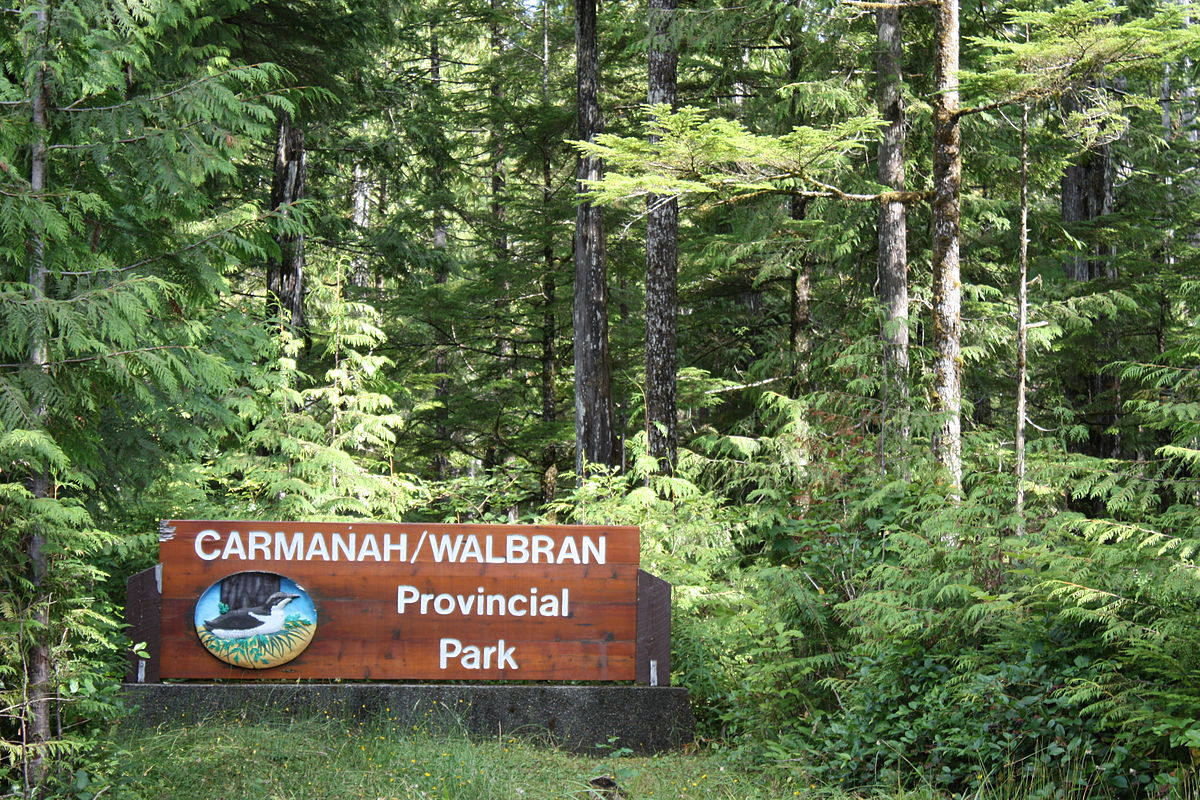 carmanah walbran provincial park wikipedia. Black Bedroom Furniture Sets. Home Design Ideas