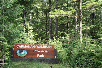Temperate rainforest - Temperate rain forest in Carmanah Walbran Provincial Park, located in Vancouver island