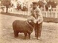Carnero premiado cuidador 1890.jpg