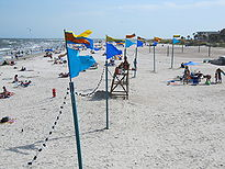 Blue, red, and yellow flags raised on poles are lined up in the sand on a beach. The flags are connected with light strings. The ocean and people are visible beneath the flags in the background.