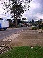 Carretera a San Ramón - panoramio.jpg