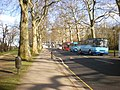 Carriage Drive North, Battersea park - geograph.org.uk - 1573588.jpg