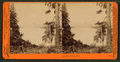 Castle Rock, Columbia River, by Watkins, Carleton E., 1829-1916 3.png