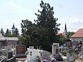 Catholic Cemetery, church towers, 2019 Veresegyház.jpg