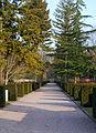Cemetery-Eckenheimer-Landstrasse-Ffm-2012-544-Hauptachse mit Menora.jpg