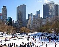 Central Park Wollman Rink.jpg