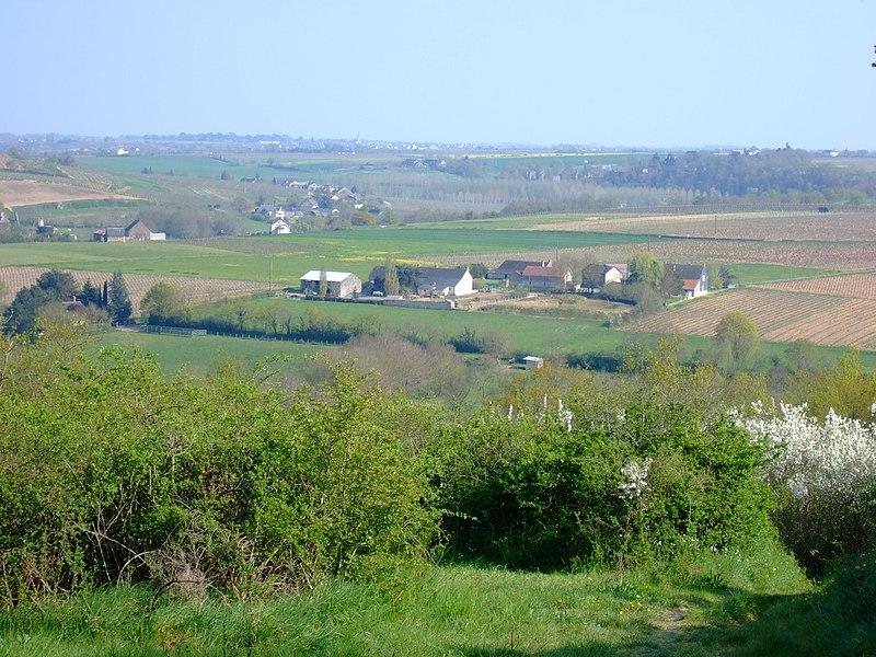 La vallée du Layon depuis le sentier de randonnée entre Ardenay et La Haie Longue