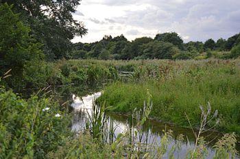 Nature Parks Essex
