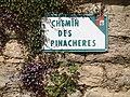 Chemin des Pinachères (Beynost).jpeg