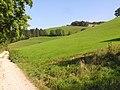 Chemin saint Michel - panoramio.jpg
