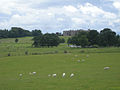 Chirk Castle across the park - geograph.org.uk - 874795.jpg