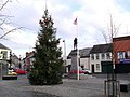 Christmas tree, Dromore - geograph.org.uk - 1615992.jpg