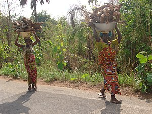 Agriculture in Ivory Coast - A rural scene in Ivory Coast