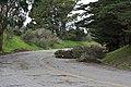 Closed-off road, pt. 1 (2275916575).jpg