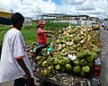 Coconut Vendor, Marabella, Trinidad and Tobago.JPG