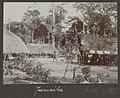 Collectie NMvWereldculturen, RV-A102-1-182, 'Jamaike'. Foto- G.M. Versteeg, 1903-1904.jpg