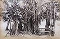 Collectie Nationaal Museum van Wereldculturen TM-60061663 Man op een bankje onder een grote boom met luchtwortels Jamaica.jpg