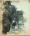 Collectie Nationaal Museum van Wereldculturen TM-60062377 Vrouwen, lopend en op ezels, met manden Dominicaanse Republiek fotograaf niet bekend.jpg