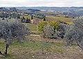 Colli del Chianti.jpg