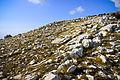 Colline rocciose - Parco Naturale dei Monti Aurunci.jpg