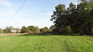 Colney Heath Local Nature Reserve