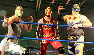Chikara Tomorrow Never Dies - The Colony (Silver Ant, Fire Ant and Worker Ant) represented Chikara during the torneo cibernetico at Tomorrow Never Dies