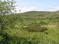 Cooly Townland - geograph.org.uk - 1341096.jpg