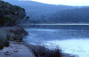 Eden, New South Wales - Lake Curaldo at dusk