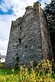 County Dublin - Balrothery Tower - 20190706163009.jpg